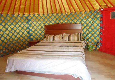 蒙古包住宿多少钱一晚?